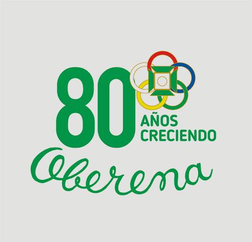 logotipo aniversario institucional